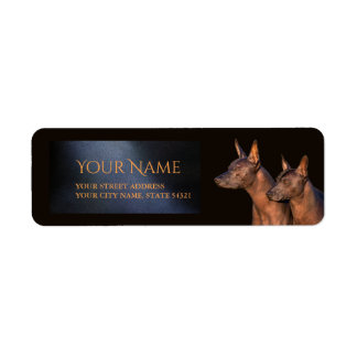 Xoloitzcuinte Dogs Return Address Label
