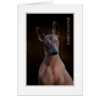 Xoloitzcuintle Blank Greeting Card