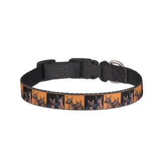Xoloitzcuintle Dog Collar