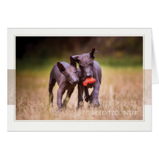 Xoloitzcuintle Puppies Greeting Card
