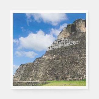 Xunantunich Mayan Ruin in Belize Disposable Napkin
