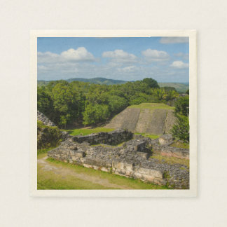 Xunantunich Mayan Ruin in Belize Disposable Serviettes