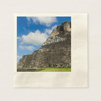 Xunantunich Mayan Ruin in Belize Paper Napkin