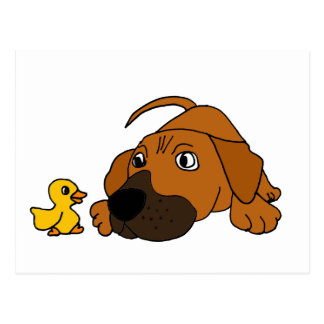 XX- Brown Puppy Dog with Rubber Duck Cartoon Postcard