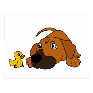 XX- Brown Puppy Dog with Rubber Duck Cartoon Postcard