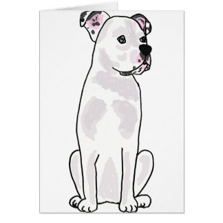 XX- Cute American Bulldog with Studded Collar Card