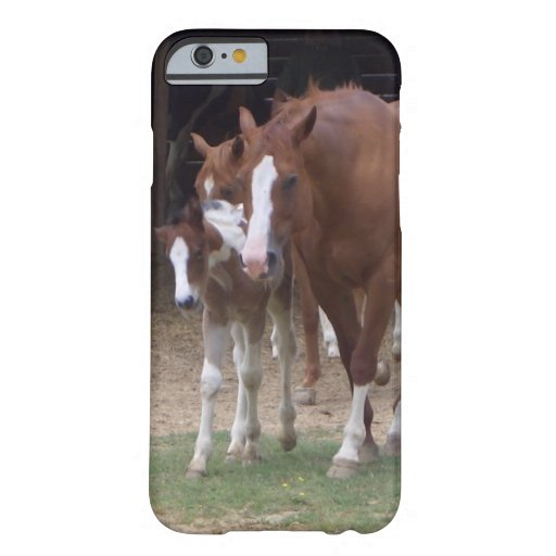 XX- Horse Photography Art Design iPhone 6 Case