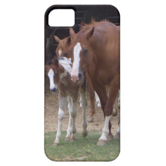 XX- Horse Photography Art Design iPhone 5 Case