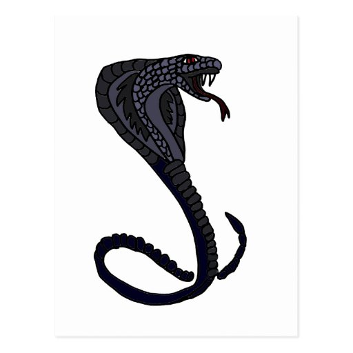 XX- King Cobra Snake Design Postcards