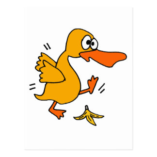 XY- Funny Duck Slipping on Banana Peel cartoon Postcard