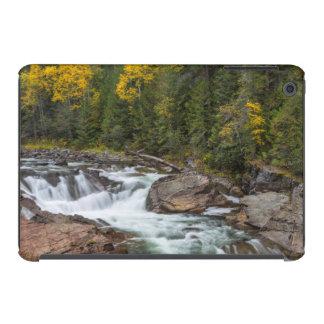 Yaak Falls In Autumn In The Kootenai National iPad Mini Retina Cases