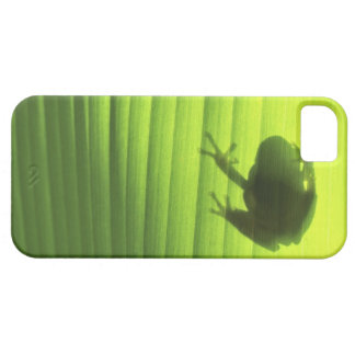 Yachiyo, Chiba Prefecture, Japan 2 Barely There iPhone 5 Case