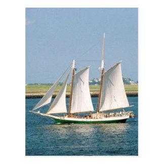 Yacht in Boston Harbor Postcard