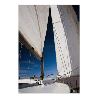 Yacht sails and sky poster