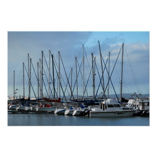 Yachts in The Cape South Africa Posters