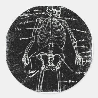 yaie tokyo human skeleton anatomy classic round sticker
