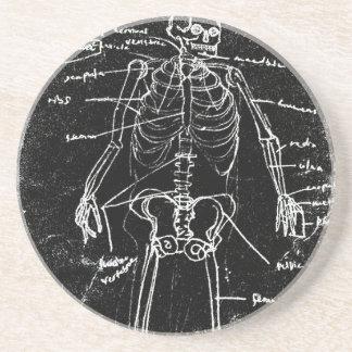 yaie tokyo human skeleton anatomy coaster