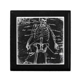 yaie tokyo human skeleton anatomy gift box