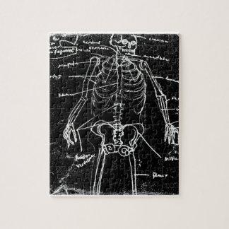 yaie tokyo human skeleton anatomy jigsaw puzzle