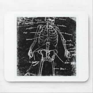 yaie tokyo human skeleton anatomy mouse pad