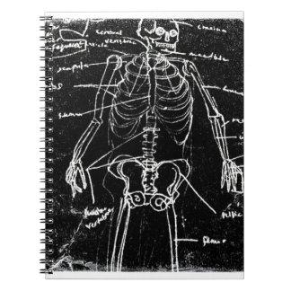 yaie tokyo human skeleton anatomy notebook
