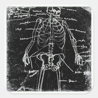 yaie tokyo human skeleton anatomy square sticker