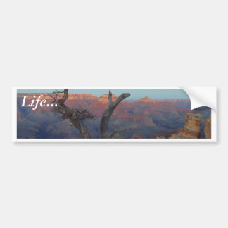 Yaki Point At The Grand Canyon Bumper Sticker