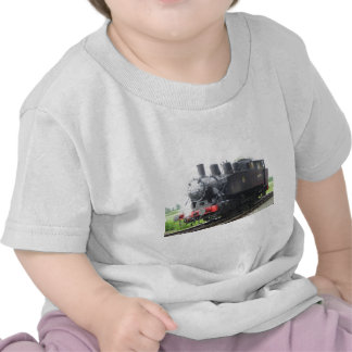 Yankee Tank steam train