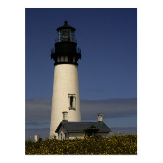 Yaquina Head Lighthouse--NEW Postcard
