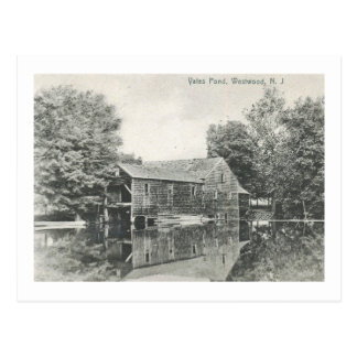 Yates Pond, Westwood, New Jersey Vintage Postcard