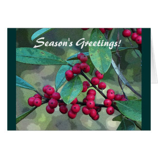 Yaupon Holly Cards