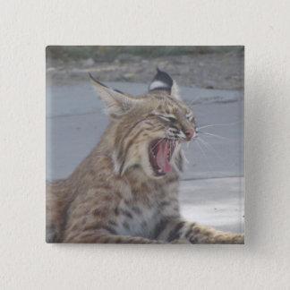 Yawning Bobcat 15 Cm Square Badge