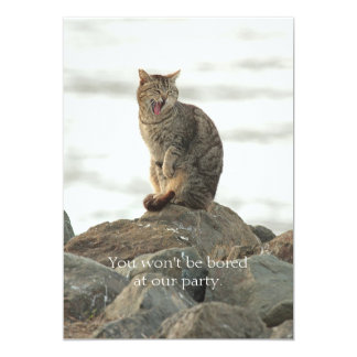 "Yawning Cat on the Rocks Invitation 5"" X 7"" Invitation Card"