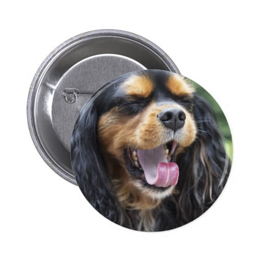 Yawning Cavalier King Charles Spaniel Button