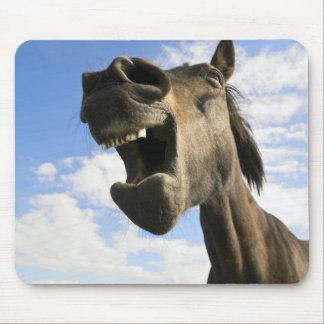 Yawning horse mouse pad