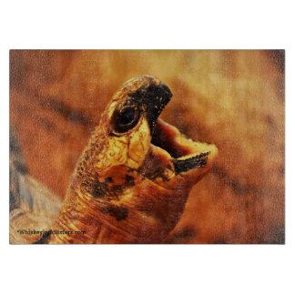 Yawning Radiated Tortoise Cutting Board