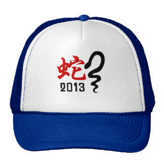 Year of The Snake 2013 Hats