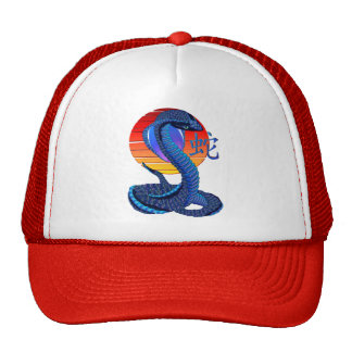 Year Of The Snake and Sun Hat