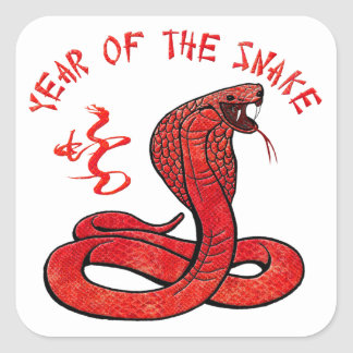 Year Of The Snake Square Sticker