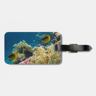 Yellow and Black Butterfly Fish Tags For Luggage