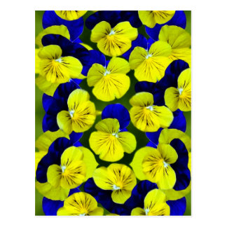 Yellow and blue pansies postcards