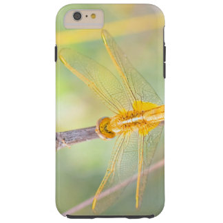 Yellow and gold dragonfly tough iPhone 6 plus case