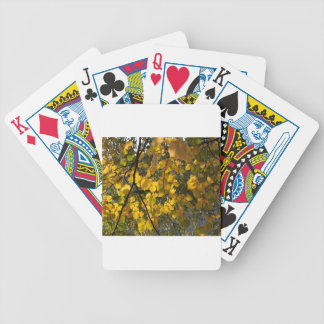 Yellow and green autumn leaves bicycle playing cards
