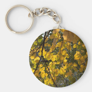 Yellow and green autumn leaves key ring