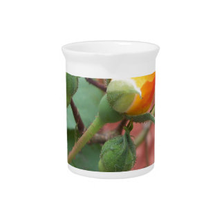 yellow and orange rose bud pitcher