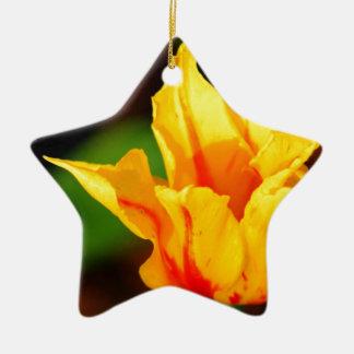 Yellow and Orange Tulip Ceramic Star Decoration