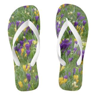 Yellow and Purple Crocuses Adult Flip Flops