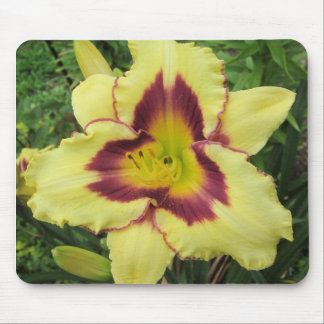 Yellow and Purple Lilly Pad Mouse Pad
