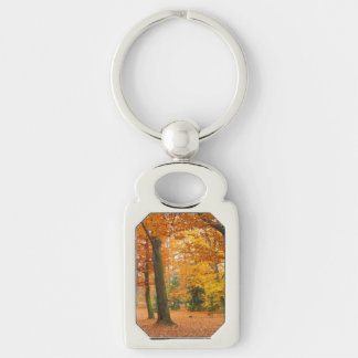 Yellow and Red Autumn Trees and Leaves Key Ring