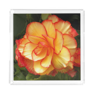 Yellow and Red Begonia Floral Acrylic Tray